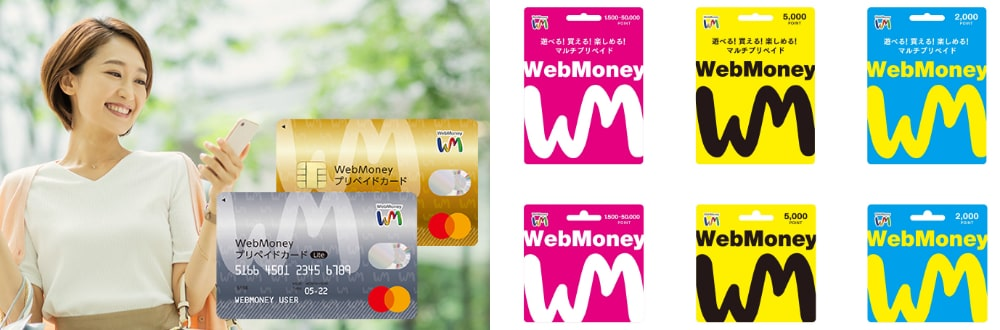 「WebMoney」「WebMoney プリペイドカード」の発行・販売及び電子決済サービスの提供。